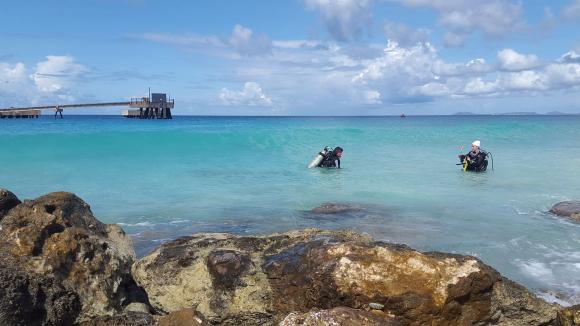 Bonaire_divers